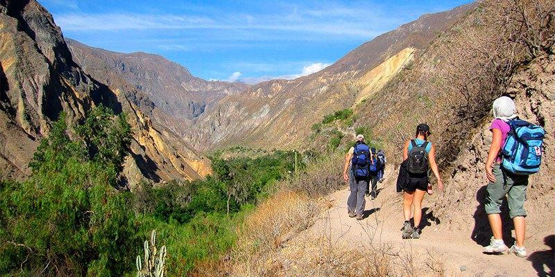 Colca Canyon Treks - Oasis Palmeras 2Days | FindLocalTrips