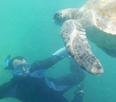 Snorkeling With Turtles In Mancora
