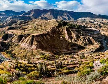 Colca Canyon Tours and Treks